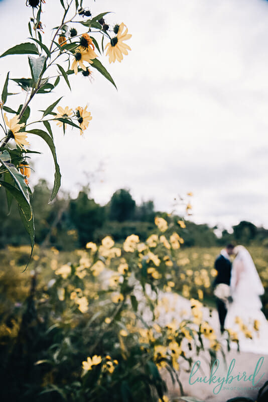 wedding flowers and couple kissing