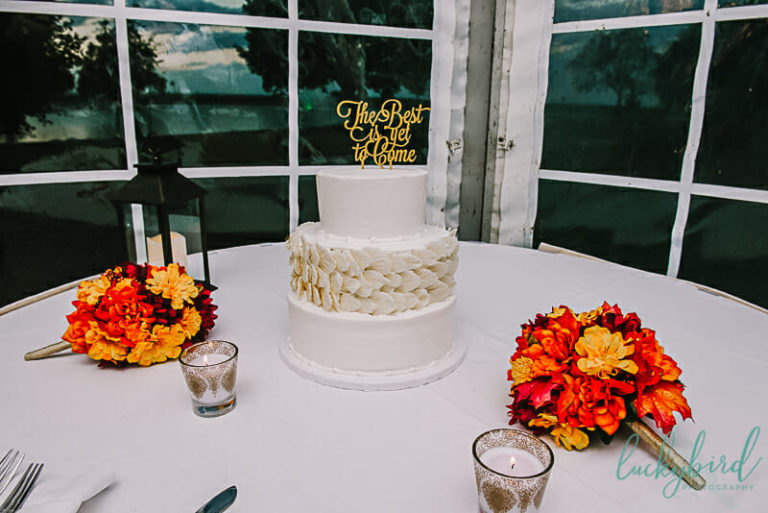 estons cake at maumee bay wedding