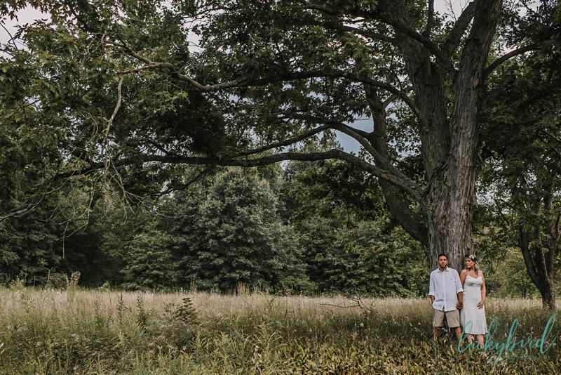 unique oak openings engagement session