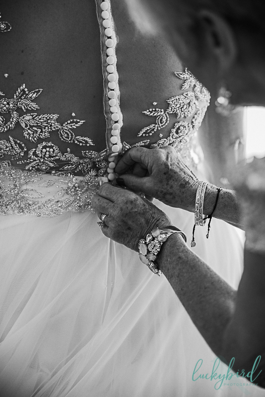 renaissance toledo wedding photo