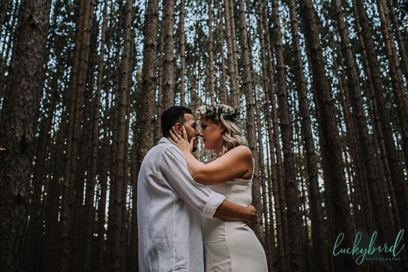 the spot oak openings engagement session