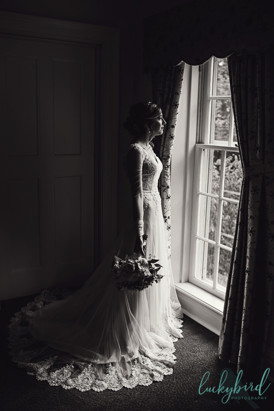 toledo silhouette bride wedding photo