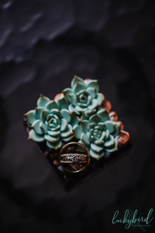 wedding ring photo on a succulent ring box