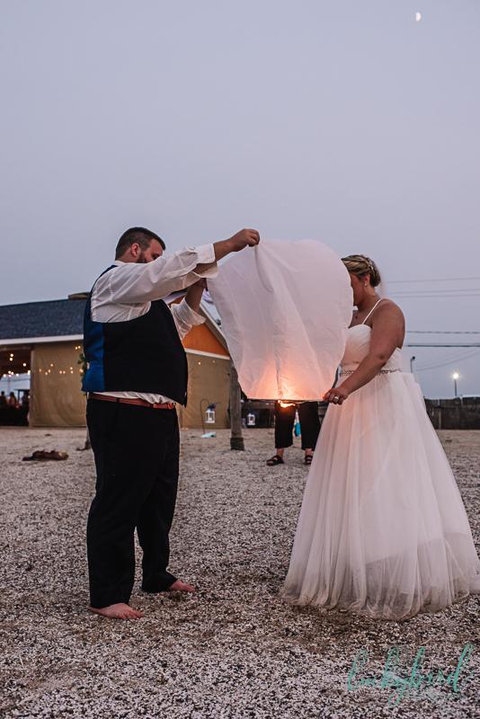 toledo paper lanterns photo