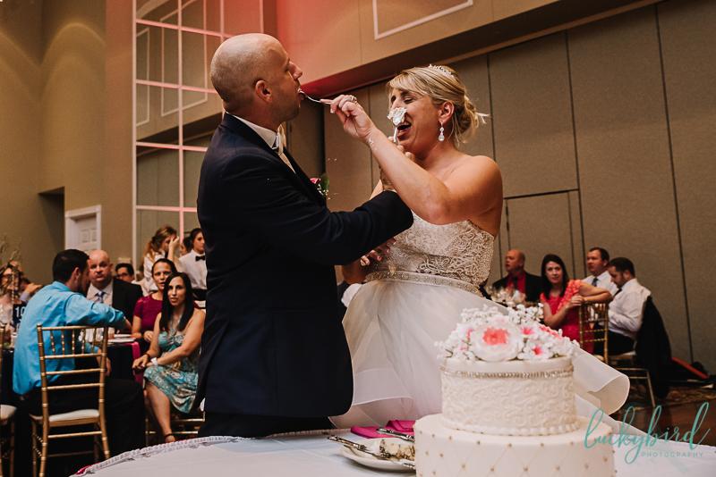 dinolfos cake smash photo