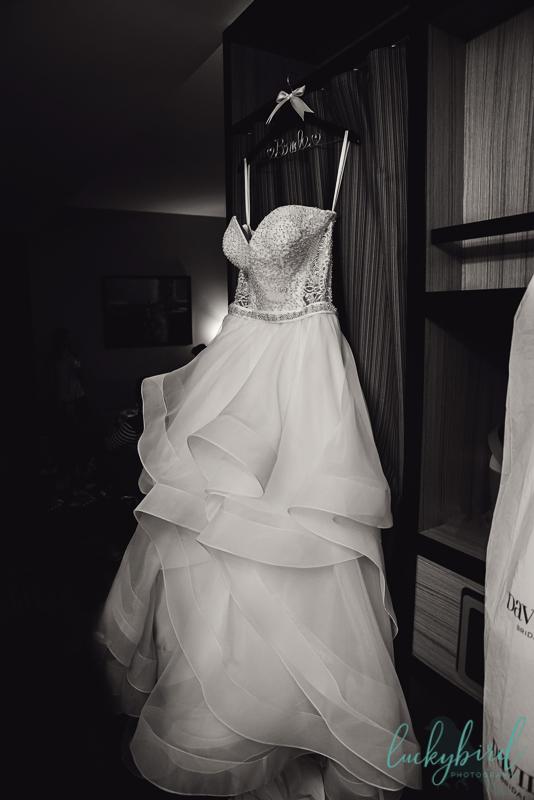 evas bridal of oaklawn wedding dress