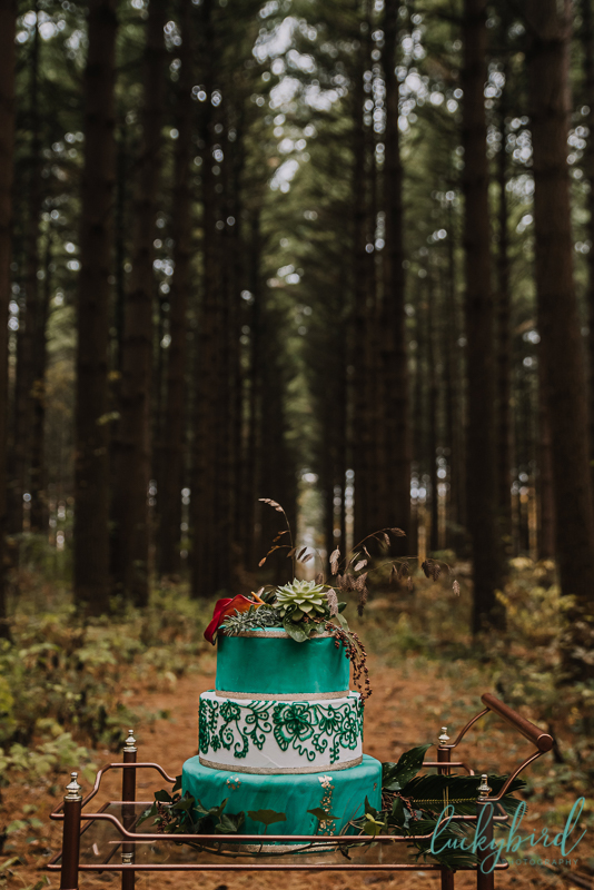 7 little cupcakes cake styled shoot in the woods