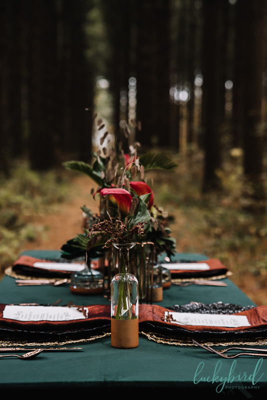 winter styled photo shoot in the woods
