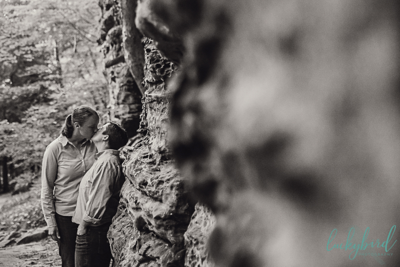 cuyahoga valley overlook same sex engagement session