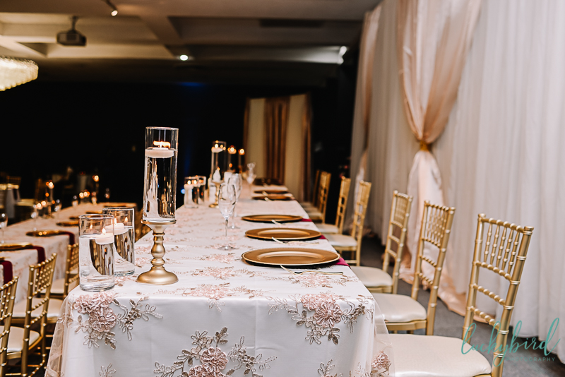gorgeous stranahan toledo wedding reception