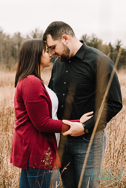 oak-openings-engagement-session-in-a-field-with-tall-grass