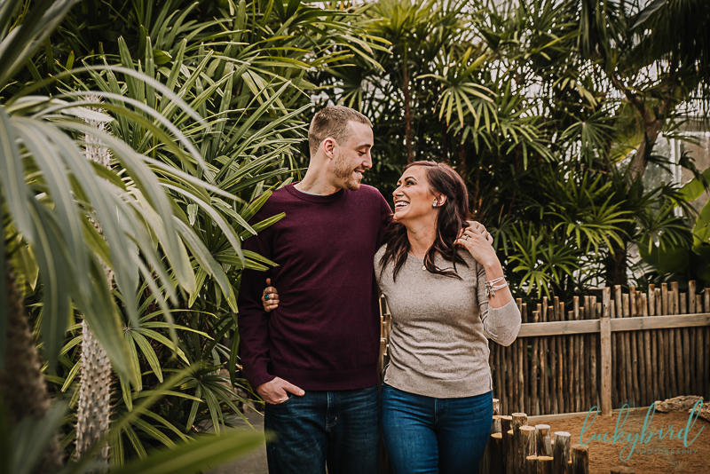 candid engagement photos at toledo zoo
