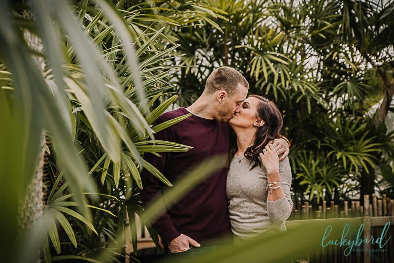 cute couple toledo zoo engagement photo