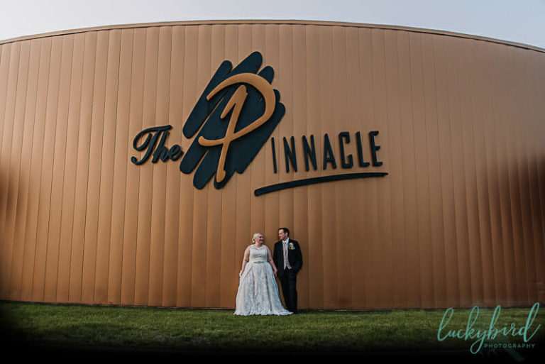 the pinnacle maumee wedding picture