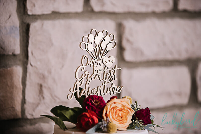 cute cake topper greatest adventure toledo zoo