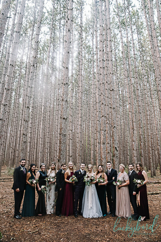 wedding party at the spot oak openings