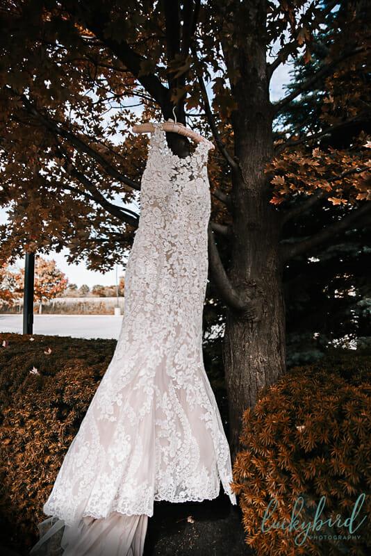 lace wedding dress in orange tree during fall