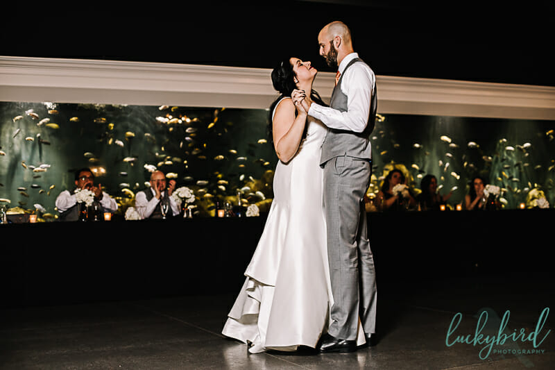 first dance at malawi toledo zoo