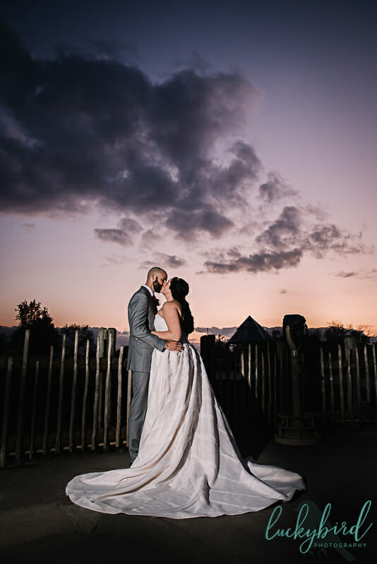 sunset wedding photo at toledo zoo