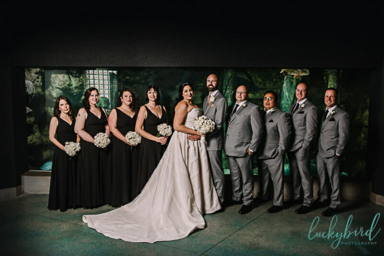 toledo zoo wedding party photos in aquarium