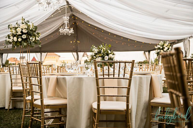tented wedding reception in perrysburg