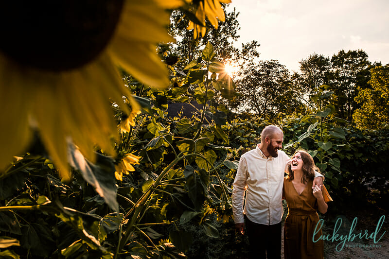 sunflower toledo botanical engagement session