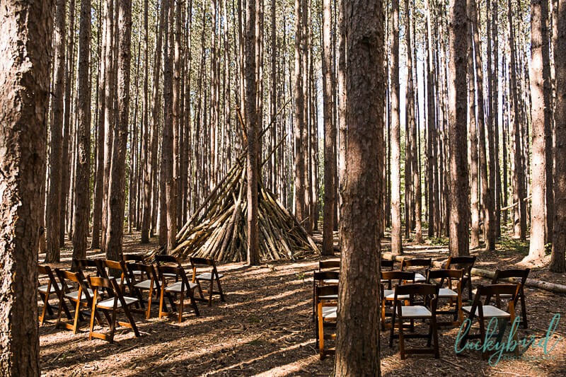 the spot oak openings wedding ceremony