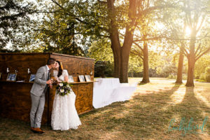 toledo botanical garden wedding