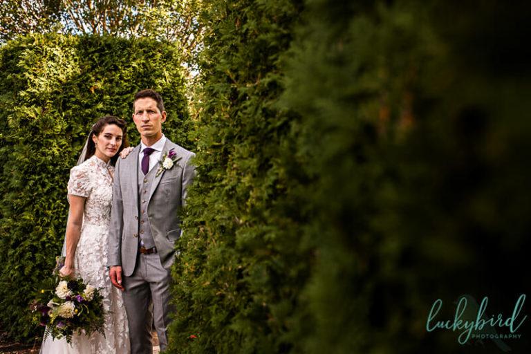 toledo botanical garden wedding photo in hedges