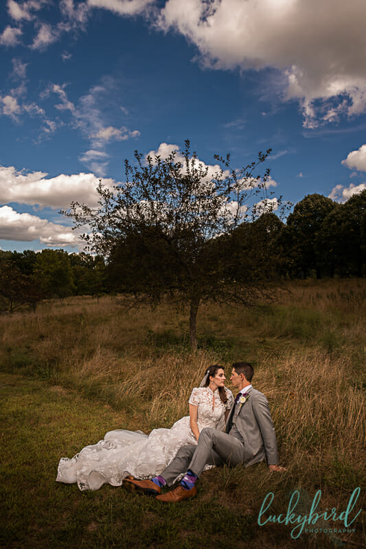 toledo botanical garden wedding photo sitting in the tall grass field
