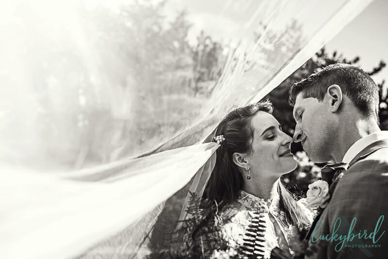 wedding photo under veil