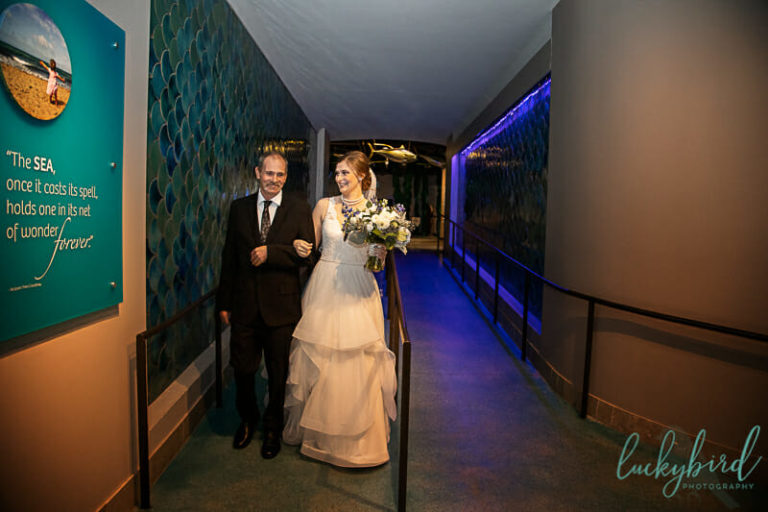 bride and dad walking down the aisle at toledo zoo aquarium wedding