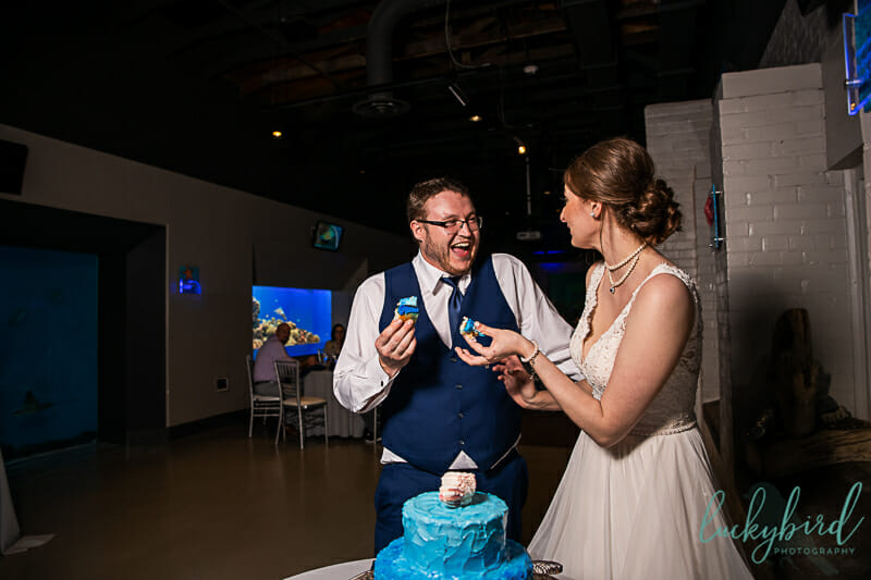 cake cutting toledo zoo wedding