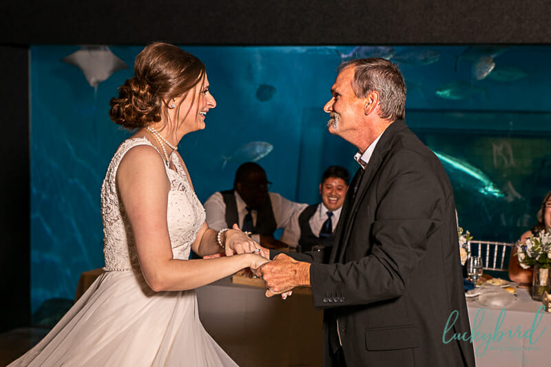 father daughter dance toledo zoo wedding