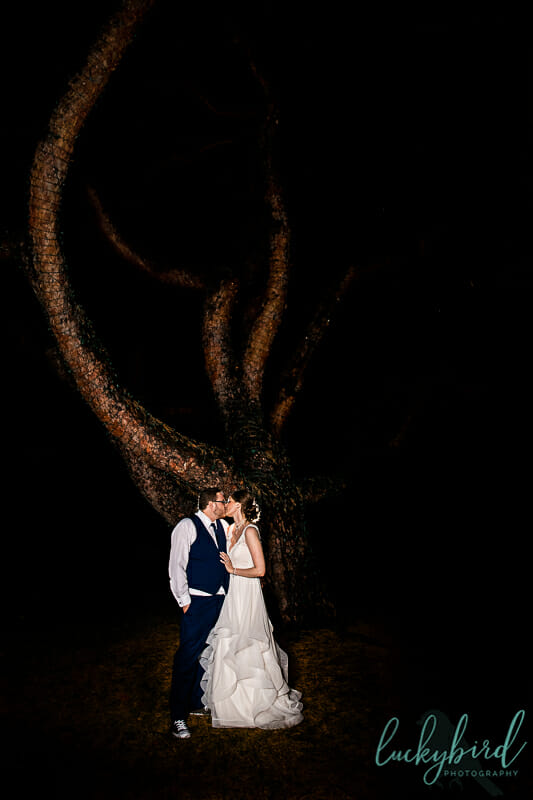 night photo at toledo zoo wedding