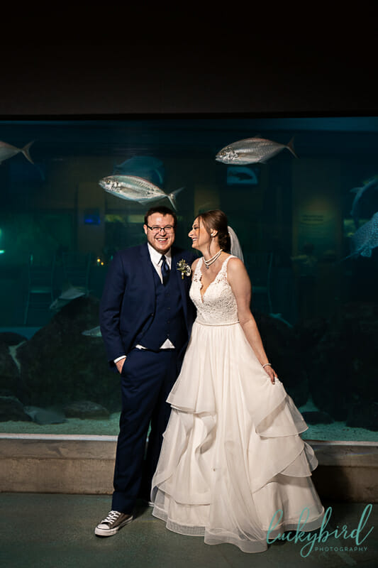 toledo zoo aquarium wedding photos