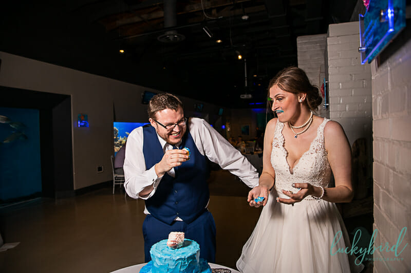 upset bride at toledo zoo wedding curing cake smash