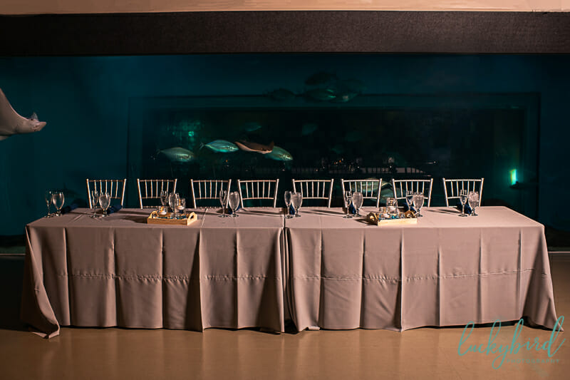 wedding party reception table at toledo zoo