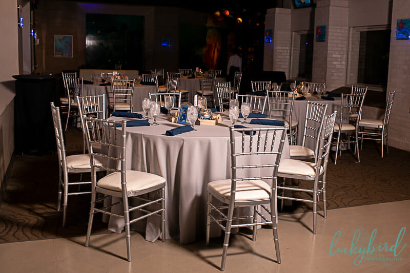 wedding reception at toledo zoo aquarium wedding