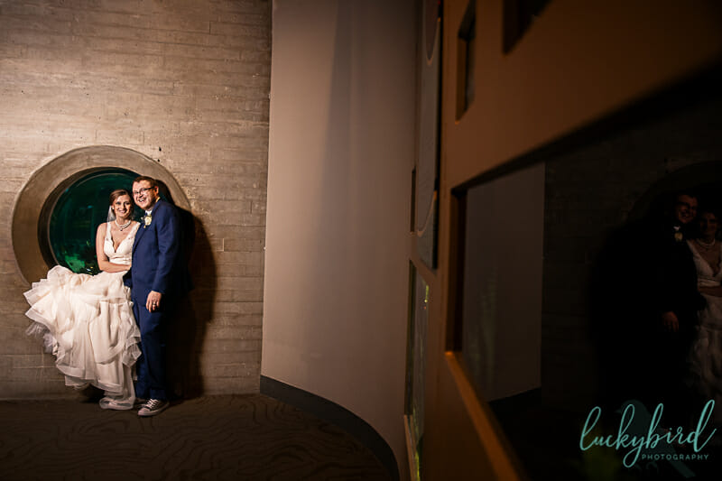 wedding at aquarium toledo zoo