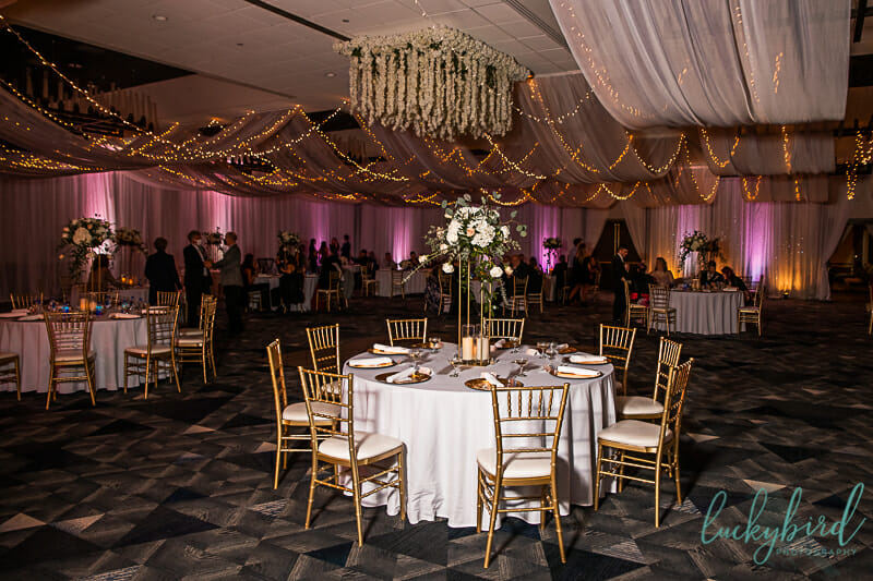 renaissance toledo wedding reception with pink uplighting