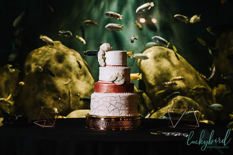 7-little-cupcakes-wedding-cake-at-malawi-toledo-zoo