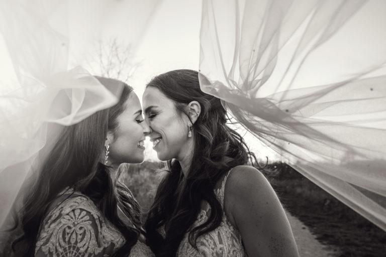 same sex toledo wedding photo