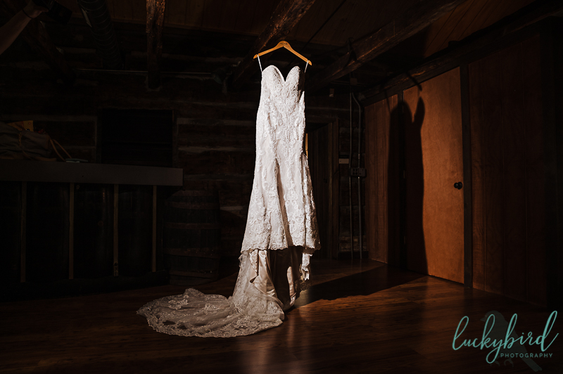 brides dress at gideon owen winery wedding