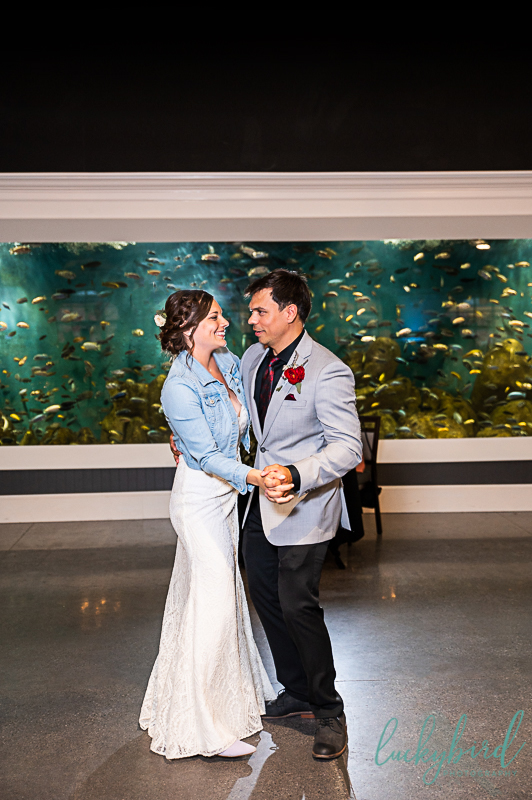 first dance at toledo zoo malawi wedding