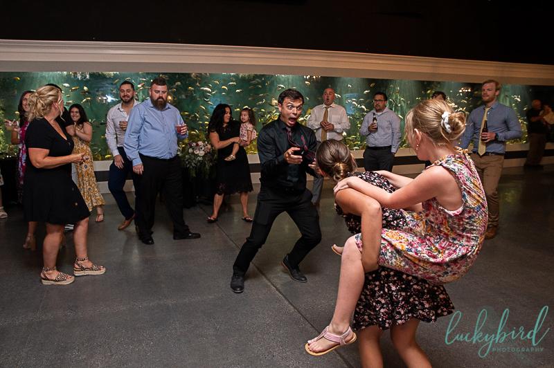 fun toledo zoo malawi wedding