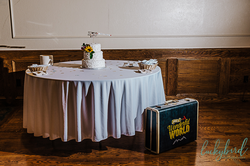 fun travel themed wedding cake