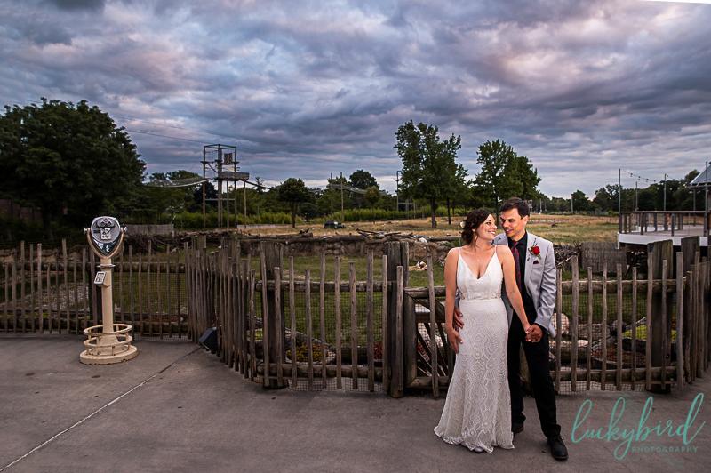sunset photos at toledo zoo malawi wedding