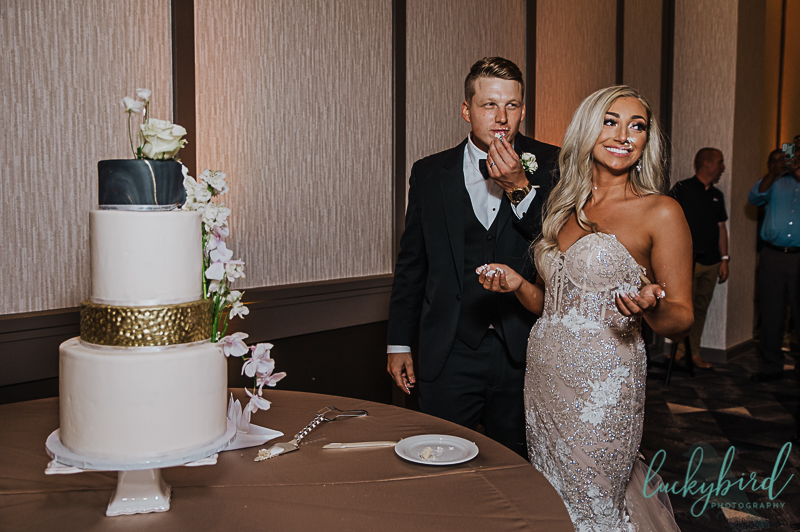 renaissance toledo cake smash